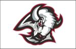 1529_buffalo_sabres-jersey-2000